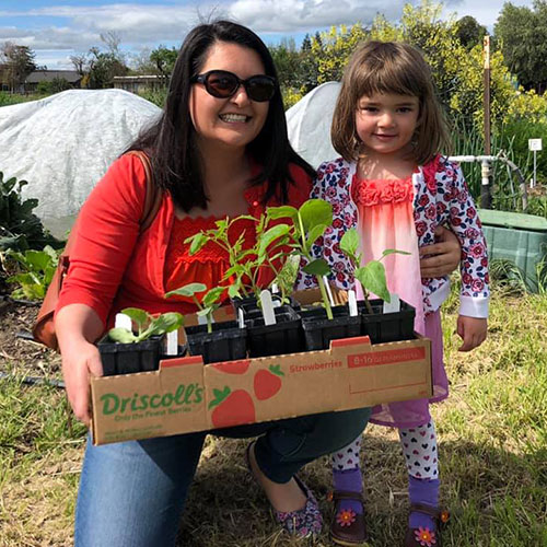 Fertile GroundWorks Plant Sale Fundraiser